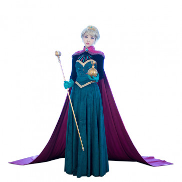 Disney Frozen Elsa Coronation Cosplay Costume Dress For Adults Halloween Costume