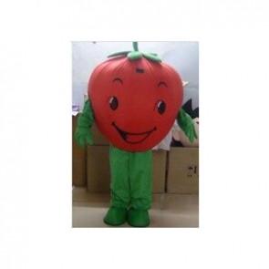 Giant Strawberry Mascot Costume