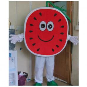 Giant Watermelon Mascot Costume