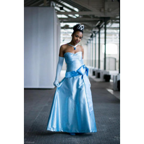 Tiana Blue Dress Costume