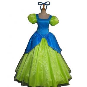 Cinderella Evil Stepsister Drizella Costume